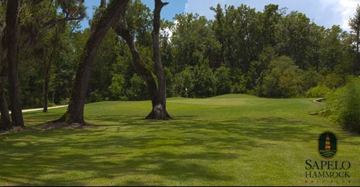 McIntosh County Office of the Sheriff's 15th Annual Golf Tournament @ Sapelo Hammock Golf Club | Shellman Bluff | Georgia | United States
