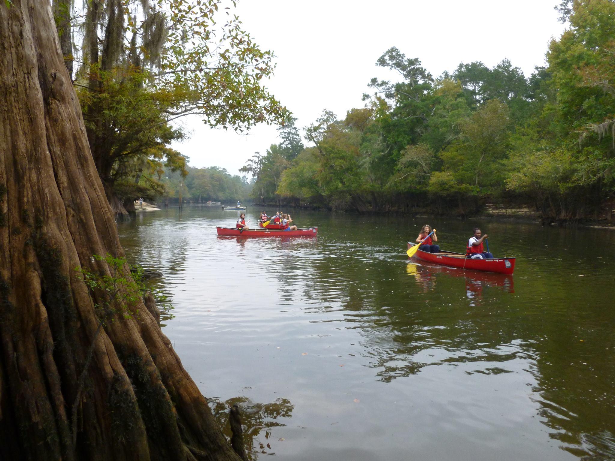 5th Annual Keep McIntosh Beautiful Rivers Alive! Cleanup @ Barrington Park