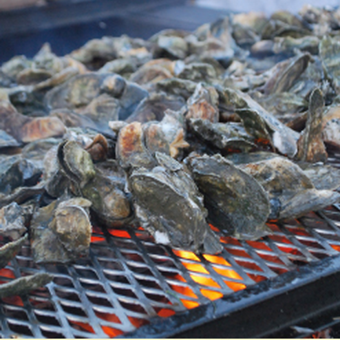 22 nd Annual Oyster Roast @ the Lions Club @ Darien | Georgia | United States